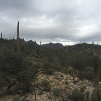 Photo taken at Sabino Canyon Recreation Area by Andrew R. on 3/10/2017