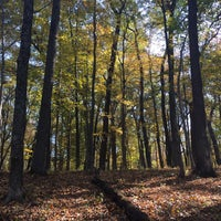 Photo taken at Spring Mill State Park by Andrew R. on 11/1/2016
