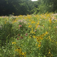 Photo taken at Cherokee Park by Andrew R. on 7/14/2016
