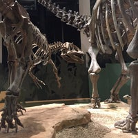 Photo taken at Sam Noble Oklahoma Museum of Natural History by Andrew R. on 1/10/2015
