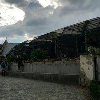 Photo taken at ZOO (voliéry) by Jaroslav P. on 9/20/2015