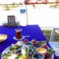 Снимок сделан в Nallı Bahçe At Çifliği пользователем Nurullah M. 8/24/2018