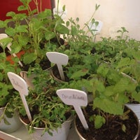 Foto scattata a Quinoa Restaurante da Mar B. il 10/13/2012
