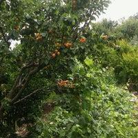 Photo taken at Karadere by Nida T. on 5/15/2016