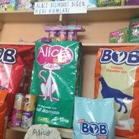 Das Foto wurde bei Alice Pet Shop von Oktay Ç. am 4/30/2013 aufgenommen