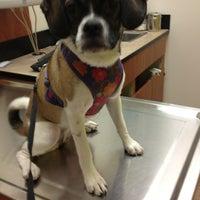 Photo taken at Banfield Pet Hospital by Mac on 7/5/2013