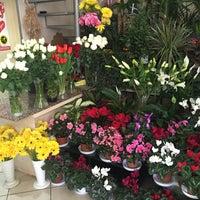 Photo taken at Sevda Flowers by 🇹🇷🇹🇷Ali G. on 12/24/2015
