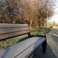 11/11/2012 tarihinde Владимир К.ziyaretçi tarafından Парк «Северное Тушино»'de çekilen fotoğraf