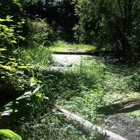 Photo taken at Bellevue Botanical Garden by Kym R. on 8/7/2013
