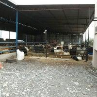 Photo taken at çiçek çiftliği by Bekir D. on 9/6/2016