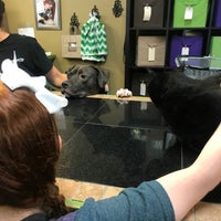 Photo taken at The Good Dog Company by Amy S. on 5/31/2017