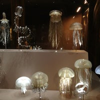 Photo taken at Muséum d'Histoire Naturelle by Konstantin G. on 2/8/2013