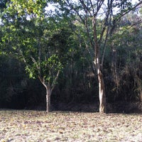 Photo taken at Bosque Francisco Tamayo by Katy M. on 3/14/2017