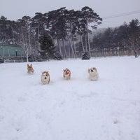 Photo taken at 松原公園 by Naosan m. on 2/24/2013