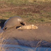 Photo taken at Donna Nook Beach by Ray W. on 11/11/2012