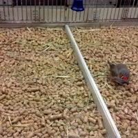 Photo taken at PetSmart by Ryan P. on 12/5/2012