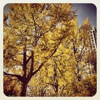 Foto tirada no(a) Washington Square por Jay D. em 11/23/2012