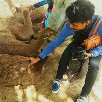 Photo taken at Rabbit Park by yan d. on 6/1/2016