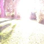 Photo taken at Lemonia Grove by Brad R. on 11/10/2012