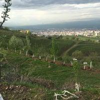 Photo taken at Muş bağları by Osman Ç. on 5/1/2016