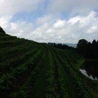 Photo taken at Blue Mountain Vineyards & Cellars by Robert L. on 8/3/2013