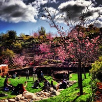 Photo taken at Japanese Friendship Garden by Nickolas T. on 3/10/2013