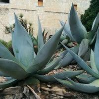 Photo taken at Jardin Etnobotanico De Oaxaca by George H. on 6/9/2015