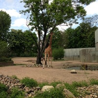 Photo taken at Zoo Dresden by Mikhail S. on 5/14/2013