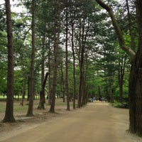 Photo taken at Nami Island by junghwa l. on 5/14/2013