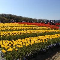Photo taken at 国営越後丘陵公園 by aekaw a. on 5/4/2013