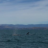 Photo taken at Island Packers by Frank M. on 3/18/2018