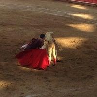 2/24/2013にAlfonso L.がPlaza de Toros Nuevo Progresoで撮った写真