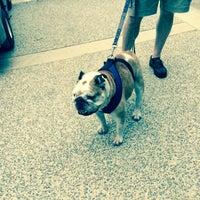 Das Foto wurde bei Wolfington Hall, Georgetown University von Thomas W. am 5/9/2015 aufgenommen