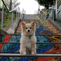 Photo taken at Hidden Garden Mosaic Steps by Cyrus H. on 1/30/2017