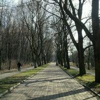 Photo taken at Park Śląski by Arek S. on 4/14/2013