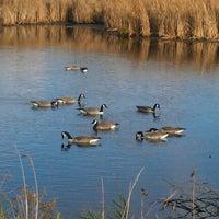 Photo taken at Wood Lake Nature Center by Brita on 10/20/2012