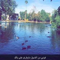 Photo taken at Lakeside Cafe by NBA🇶🇦 on 11/18/2015
