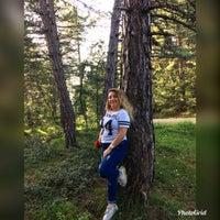 Photo taken at Bolu ormanlari by Büşra Y. on 6/17/2018