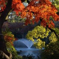 Foto scattata a Inokashira Park da Yoko S. il 12/1/2012