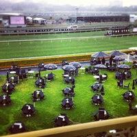 Photo taken at Royal Randwick Racecourse by Nick H. on 10/6/2012
