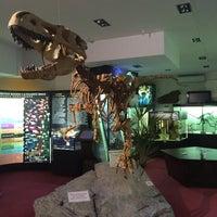 Снимок сделан в Вятский палеонтологический музей пользователем 🇷🇺Ирочка🇷🇺 5/5/2016