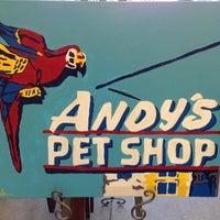 Снимок сделан в Andy's Pet Shop пользователем Karen A. 2/22/2013