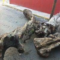 10/17/2012에 Juan Carlos C.님이 Deportivo Dr.Ponzo Gaona에서 찍은 사진
