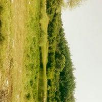 Photo taken at Ömerli Meşealtı Piknik Alanı by Sezer ✌. on 6/19/2016