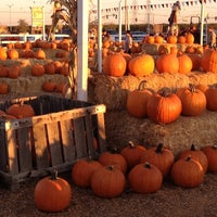 Photo taken at Dutch Hollow Farms by Miss Birdie on 10/29/2012