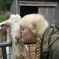 Photo taken at Jenness Farm LLC | Goat Milk Soaps by Edward S. on 8/23/2014