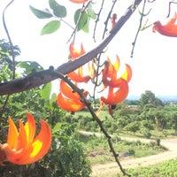 Photo taken at Muak Lek District by 🇹🇭Benz💞Dear🇩🇪 . on 10/14/2016