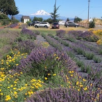 Photo taken at Hood River Lavender by Amanda A. on 7/24/2016