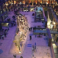 Photo taken at Grande Galerie de l'Évolution by 💓 Ody P. on 1/30/2013