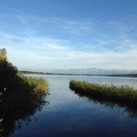 Photo taken at Naturschutzgebiet Unterer Greifensee by Peter Z. on 9/22/2013